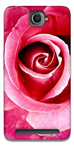 The Racoon Lean Red Rose hard plastic printed back case / cover for Alcatel Onetouch Flash