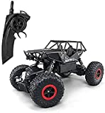 HELA RC Cars 1:18 Remote Control Off-Road Racing Vehicles 2.4GHz 4WD Radio Controlled Trucks High Speed Rock Crawler Electric Buggy (Black)