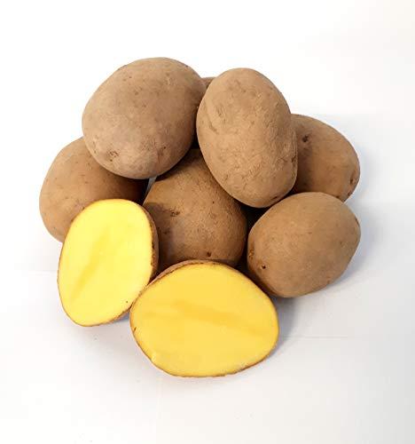 Kartoffel Afra mehlige Kartoffeln 1-25 Kg deutsche Speisekartoffel perfekt für Kartoffelsuppe, Püree, Gnocchi, Knödel, Kroketten, Ofenkartoffeln, Aufläufe, Salzkartoffeln auch zum Grillen geeignet (8)