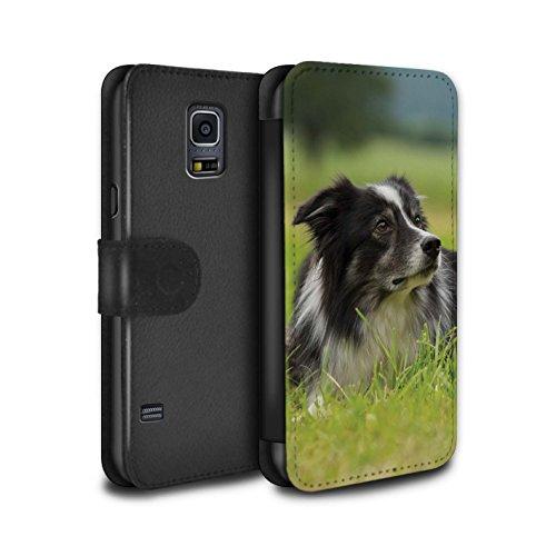 Stuff4® PU-Leder Hülle/Case/Tasche/Cover für Samsung Galaxy S5/SV/Border Collie Muster Hund/Eckzahn Rassen Kollektion