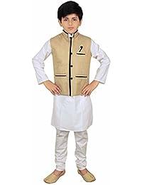 Desi Sarees Modi Nehru Gandhi Einfarbige Weste 010