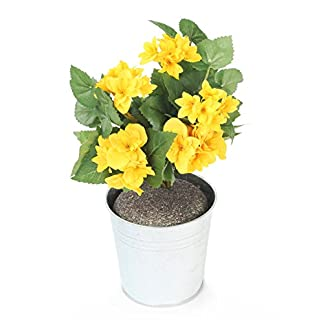 Closer To Nature HBC009YE – Begonia artificial, 24 cm, color amarillo