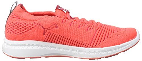 Puma Ignite Proknit Wn's, Chaussures de course femme Orange - Orange (fluo peach-white-white 05)