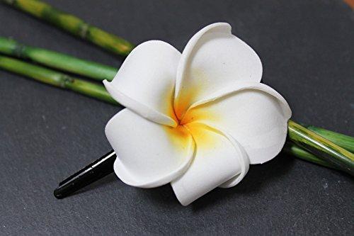 Exotische Haarklemme Haarclip Blüte Frangipani weiß 4cm lang, 4,5x4,5cm