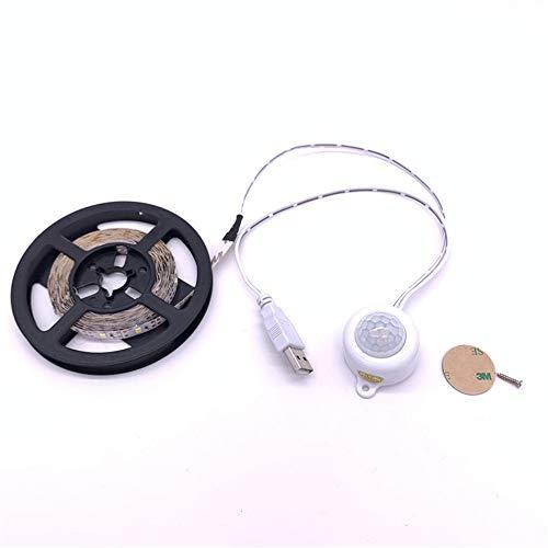 PDDXBB USB-Sensor Bewegung Led-Licht Nachtlicht Leuchte Küche Licht Bett Lampe USB-Streifen Led-Band Unter Kabinett Lampen Rosa Licht ≥2 Meter (Bare Board Ist Nicht Wasserdicht) -