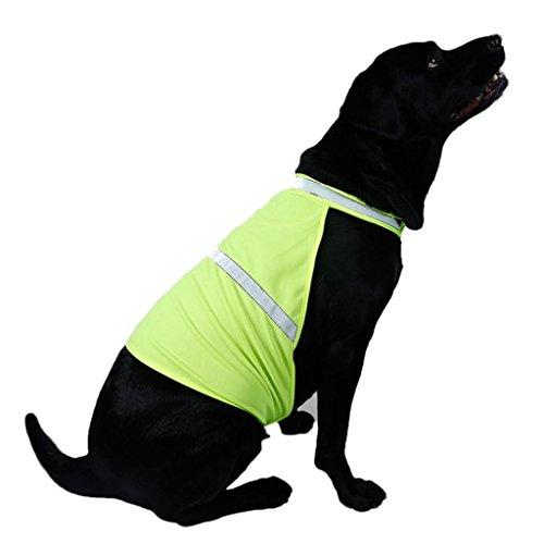 ALCYONEUS alkyoneus verstellbar Pet Warnweste Hund Jagd Sicherheit Jacke Hohe Sichtbarkeit Weste