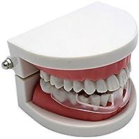 SINOTECH Dental Mundschutz verhindern Night Tala Zahn Zähne Bruxismus Schleifstifte Beseitigung Anziehen Produkt... preisvergleich bei billige-tabletten.eu