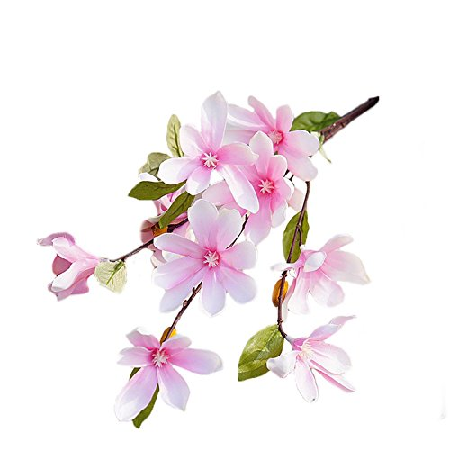 jarown-5-pcs-high-quality-real-touch-magnolia-artificial-flowers-kapok-fake-plants-for-decoration-pa