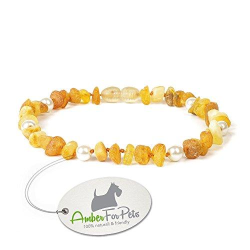 Bernstein Halsband für Hunde - von 20cm bis 60cm - Bernsteinkette Zeckenhalsband Zeckenschutz CGNpWHT26