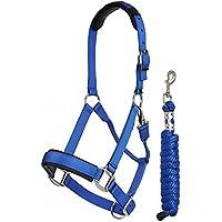LeMieux ProSport–Cuerda para cabezada y Leadrope, Unisex, ProSport Headcollar & Rope, Benetton Blue, Medium