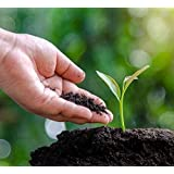 SAPRETAILER Enriched Cow Dung Compost Manure Fertilizer Complete Plant Food 20Kg