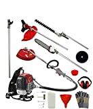 Dealourus 52cc 5 in 1 backpack Petrol Multi Tool Back Pack/Brush Cutter/Hedge Trimmer/Pruner/Extension