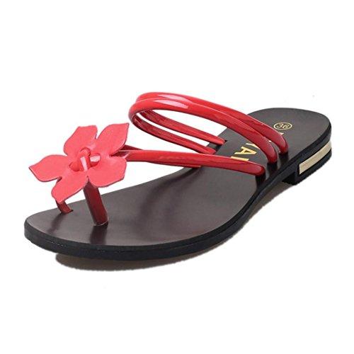 Webla Mode Sandalen Damen Bohemia Dame Flower Weave Sandalen Strand Peep-Toe Flip Flops Schuhe Hausschuhe Rot