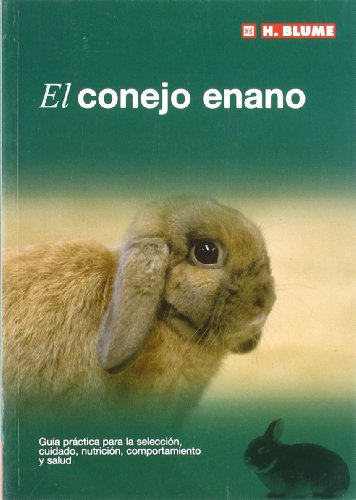 El conejo enano (Mascotas)
