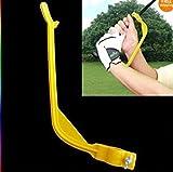Petsdelite Golfschaukel Übungshilfe für Anfänger und Gestenwerkzeuge