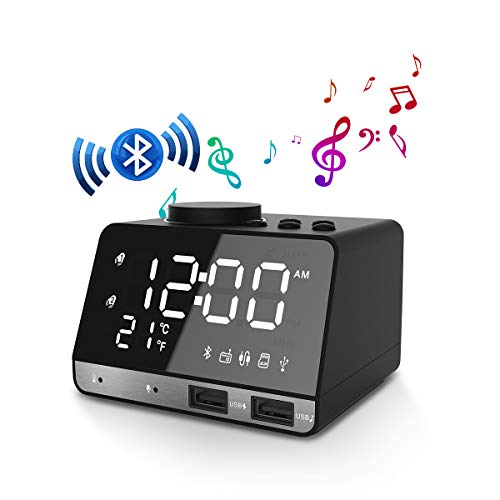 EIVOTOR Digitaler Wecker Radio BT Lautsprecher FM Radiowecker Uhrenradio mit Dual-Alarm, Snooze-Funktion, Innenthermometer, 4-stufige Helligkeit, 2 USB-Ladeanschluss, AUX, TF Karte, 12/24 Stunden