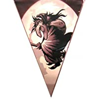 Bunting Witch Design 15 Flags on 6m