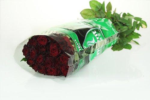10 schwarze Rosen (Black-Baccara) im Bund – unbearbeitet!