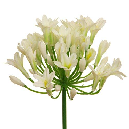 Kunstblume AGAPANTHUS ca 75 cm. Liebesblumen, Schmucklilie. CREME -02