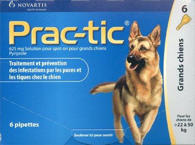 prac-tic-grosse-hunde