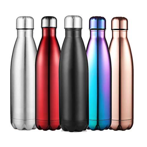 inkflasche Doppelwandige Vakuum-Isolierte Wasserflasche 500ML Thermosflasche Halten Kalt/Heiß Trinkflaschen Sport für Kinder, Erwachsen, Reisen, Auto (Silber) ()