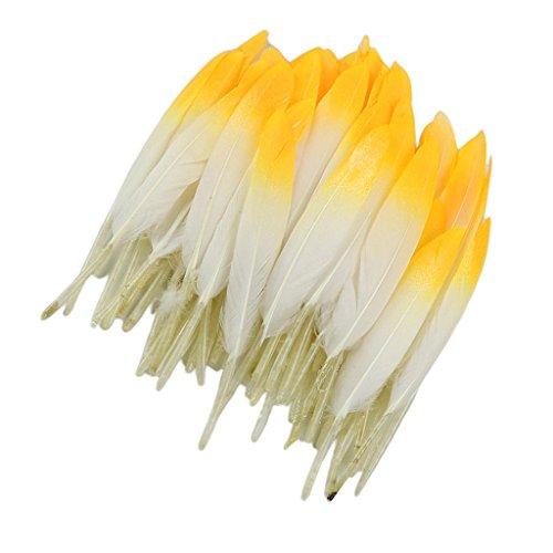 Baoblaze 12 Stück Schöne Natürliche Gänsefedern Diy Handwerk Zubehör 10-15cm - Weiß Gelb