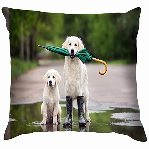 Home Fashion Pillowcase golden Retriever Dog Puppy Puddle Umbrella Animals Wildlife Dog Animals Wildlife Nature Dog Nature 18x18 IN