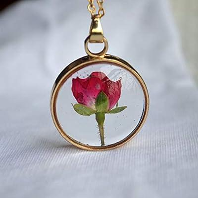 Rouge Rose Réelles Fleurs Verre Flottant Médaillon Plaqué Or 18k Longue Collier Amour Romantique