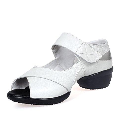 scarpe da ballo quadrati/scarpe da ballo signora/fitness/moderno/scarpe Jazz A