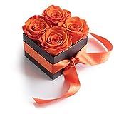 Blumenversand Rosenbox Poesie en Roses 4 konservierte Rosen haltbar 3 Jahre / 8,5x8,5cm / Blumenbox/Flowerbox / Blumengruß verschicken von ROSEMARIE SCHULZ Heidelberg (Orange)
