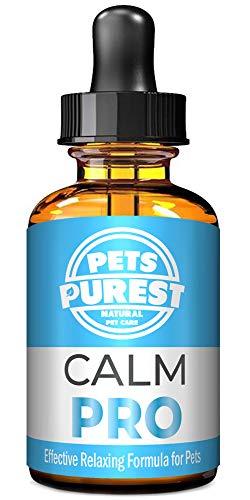 Pets Purest Supplemento al calmante Naturale al 100% per Cani, Gatti e Animali Domestici. Riduce l'ansia e Lo Stress nei Tuoi Animali Domestici (50ml) (UK)