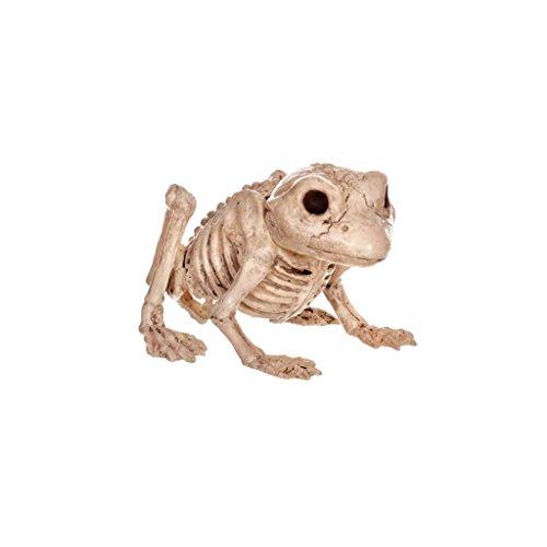 tion Haunted House Simulation Katze Frosch Tier Skelett Kopf Horror Bar Film Requisiten Halloween ()
