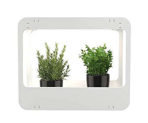Romberg 16294399 Mini-Garten mit LED-Beleuchtung Weiß 50,5 x 21 x 40 cm