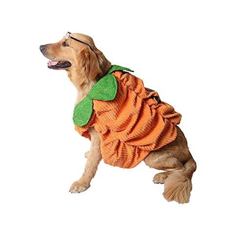 PET Halloween-Party zu Einem grenzüberschreitenden Karneval Heimtierbedarf Warme Halloween-Kürbis-Stereo-Sets Costume Pet Kleidung für kleine Hunde (Farbe : Orange, größe : S)