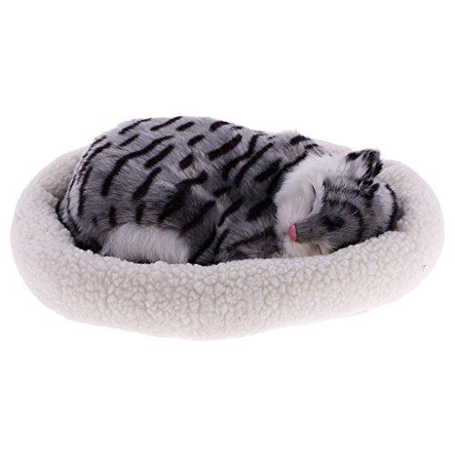 MagiDeal süße Plüschtier schlafende Tiere Spielzeug Perfektes Geschenk für Kinder - Tabby Katze (Tabby-katze-plüsch)