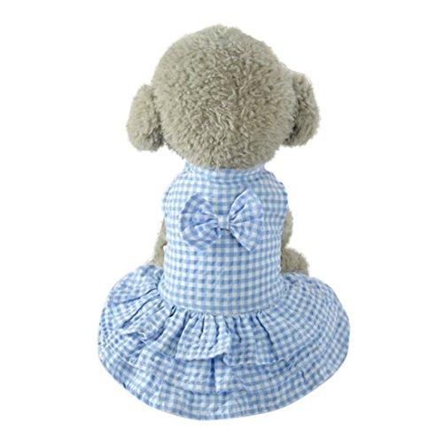 Hmeng Niedlicher Haustier Rock, süßer Bowknot Entwurfs Welpen Kleid Mädchen Hundekleidung (XS, Blau)