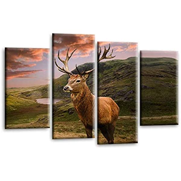 Forest Sunset Stag Deer Funky Animal Canvas Wall Art Large Picture Prints