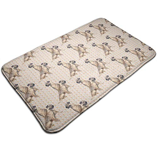 Voxpkrs Border Terriers and Paisley Bath Mats Natutal Coir Doormat for Indoor and Outdoor Entrance 19.7x31.5 Inch (Terrier Border Halloween)