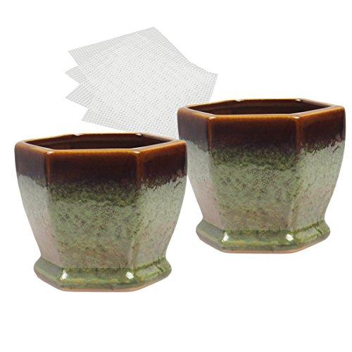 Happy Bonsai Lot de 2 petits pots vernis avec 4 filets de drainage en maille souple