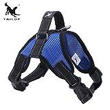 Delicacydex TAILUP Deluxe Brustgurt Sattel Typ Zugseil Soft Einstellbare Komfortable Weste Harness Großen Hund Net Tuch Hundegurt - Blau