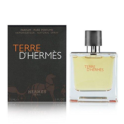 Herren Pure Parfum Spray (Hermès Terre D`Hermès homme/ men, Eau De Parfum Spray, 1er Pack, (1x 75 ml))