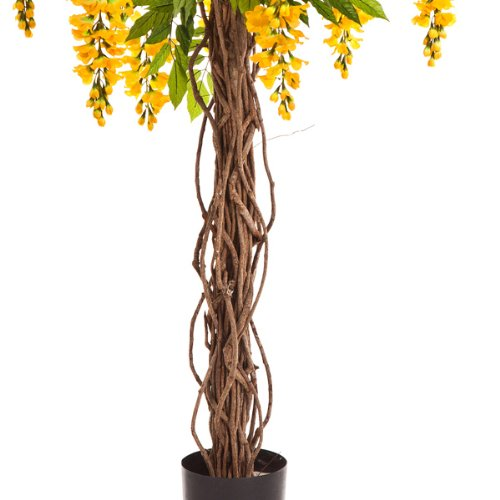 artplants Deko Goldregenbaum gelb, 975 Blätter, 35 Blüten, 180 cm – Kunstbaum/Künstliche Blumen