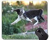 Mauspad mit genähtem Rand, Sprung defocus Katze Home Office Computerzubehör Mousepads