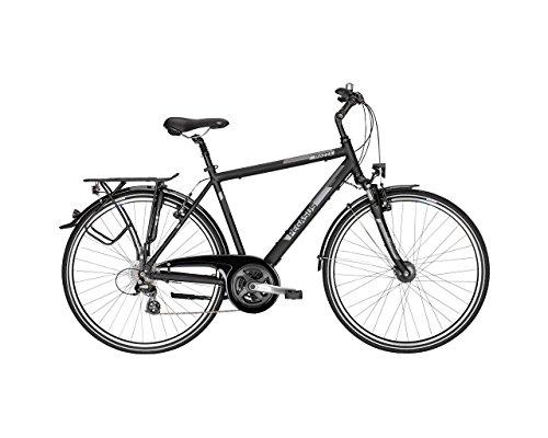 Pegasus Piazza Herren Trekking Fahrrad 28 Zoll 21 Gang
