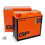 GP-PRO GT14B-BS 12V 12Ah GEL-Batterie (Ähnlich YT14B-BS / YT14B-4) (Wartungsfrei & Versiegelt) Akkumulator Motorrad Motorradbatterie