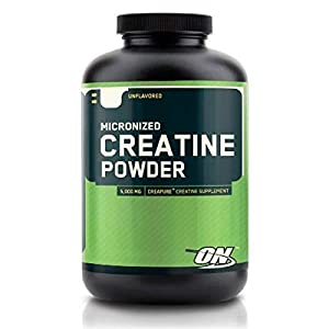 Optimum Nutrition Micronized Creatine Powder 300 g