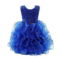 Yonglan Baby Girls Flower Tutu Princess Dress Wedding Party Christening Newborn Clothes Blue 16
