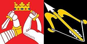 DIPLOMAT Flagge Ost Finnland   Querformat Fahne   0.06m²   17x34cm für Flags Autofahnen