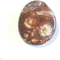 KRIO® - Edelstein Bolotie aus Birdeye Rhyolith an Lederkordel Ø 3,5-4mm ca 98 cm lang preisvergleich bei billige-tabletten.eu