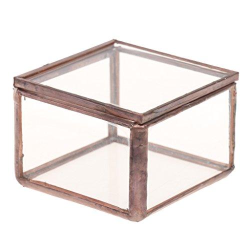 MagiDeal Geometrisches Glas Terrarium Box Schmuckschatulle Glas Sukkulente Pflanzen Pflanzgefäß Deko - S